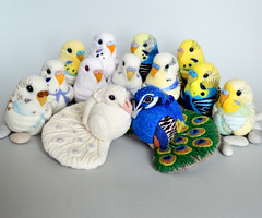 Peacocks and Budgies, needle felted wool decors (Linda Brike) Tags: needlefelting needlefelted bird ornament decor homedecor ball arttoy collectable collectorsitem wool woolart woolroommate etsy lindabrike peacock budgie budgerigar finch toucan puffin conure greencheekconure sparrow grackle robin lovebird