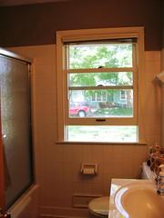 bathroom_window