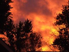 Fire in the Sky (Lewesrat) Tags: sunset sky orange clouds amazing lewesrat firelike impressedbeauty