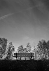 tranquility, italy. (clickykbd) Tags: park travel trees sky blackandwhite bw italy canon bench italia alone walk solo tuscany clickykbd toscana borgo tranquil 2007 bwconverted borgosanlorenzo sd1000 sopahide