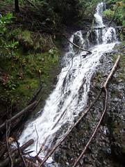 20080109 Stairstep Falls