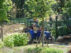 070726_zug-a-traktor-szant-az-eke (lolko74) Tags: tractor child farm lilla