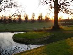 Chilton horse pond