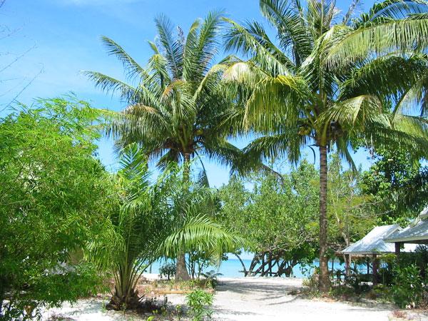 Вид на море от нашего бунгало на острове Пайам. (Koh Phayam sea view)
