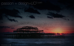 Brighton_Pier_and_Starlings_1280x800.jpg (imjustcreative) Tags: sunset wallpaper beach landscape photography brighton coastal desktoppicture desktoppictures starlings brightonpier flockofbirds desktopphoto desktopphotos wallpaperiphotoedited