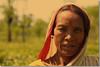 Portrait of the Past (Shabbir Ferdous) Tags: portrait art photographer tea greentea sylhet bangladesh teaplantation bangladeshi tealeaf srimongal canonef50mmf18ii teapicking canoneosrebelxti shabbirferdous womanpickingtea jamesfinlays shabbirspeople wwwshabbirferdouscom shabbirferdouscom