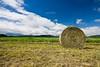 Straw (mgratzer) Tags: blue summer sky nature field grass clouds landscape geotagged austria sommer country feld wiese straw himmel wolken carinthia land blau landschaft stroh strohballen 039kmtotessendorfincarinthiaaustria geo:lat=46667320 geo:lon=14294955 tessendorf showonmysite