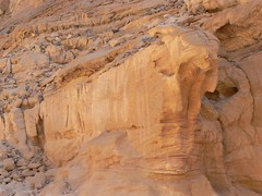 Sharm_El_Sheikh 137 (Large) (tsay) Tags: egypt sharmelsheikh naamabay