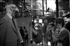 Birds (Antoine delaroche) Tags: wnwthebirds