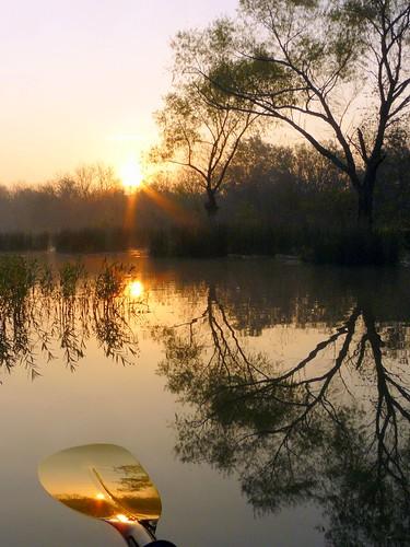 Dawn Paddle by FreeWine