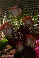 roses in the dark (PamelaAvila) Tags: flowers blue red roses floral newbie strobist offcameralighting diamondclassphotographer flickrdiamond flowerpicturesnolimits top20blue