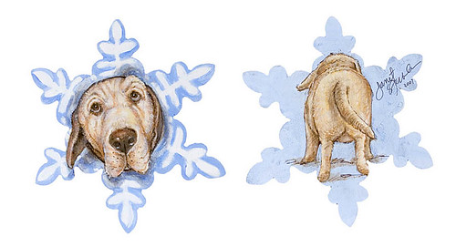 "I am not a snowflake, I'm a dog!"" by Janet Stevens"