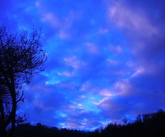 ...buchi azzurri.... (rebranca46) Tags: pink blue sky italy tree sunrise alba cielo 2008 albero fiorenzuoladifocara colorphotoaward excapture