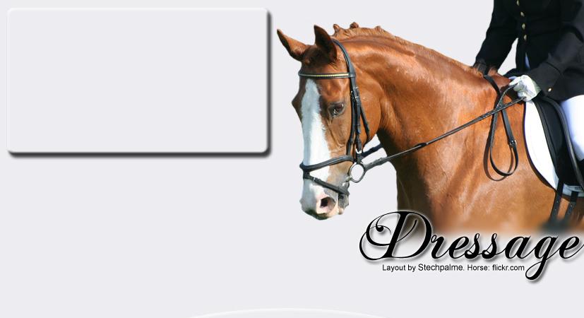 Dressage 2197298352_94ba6be841_o