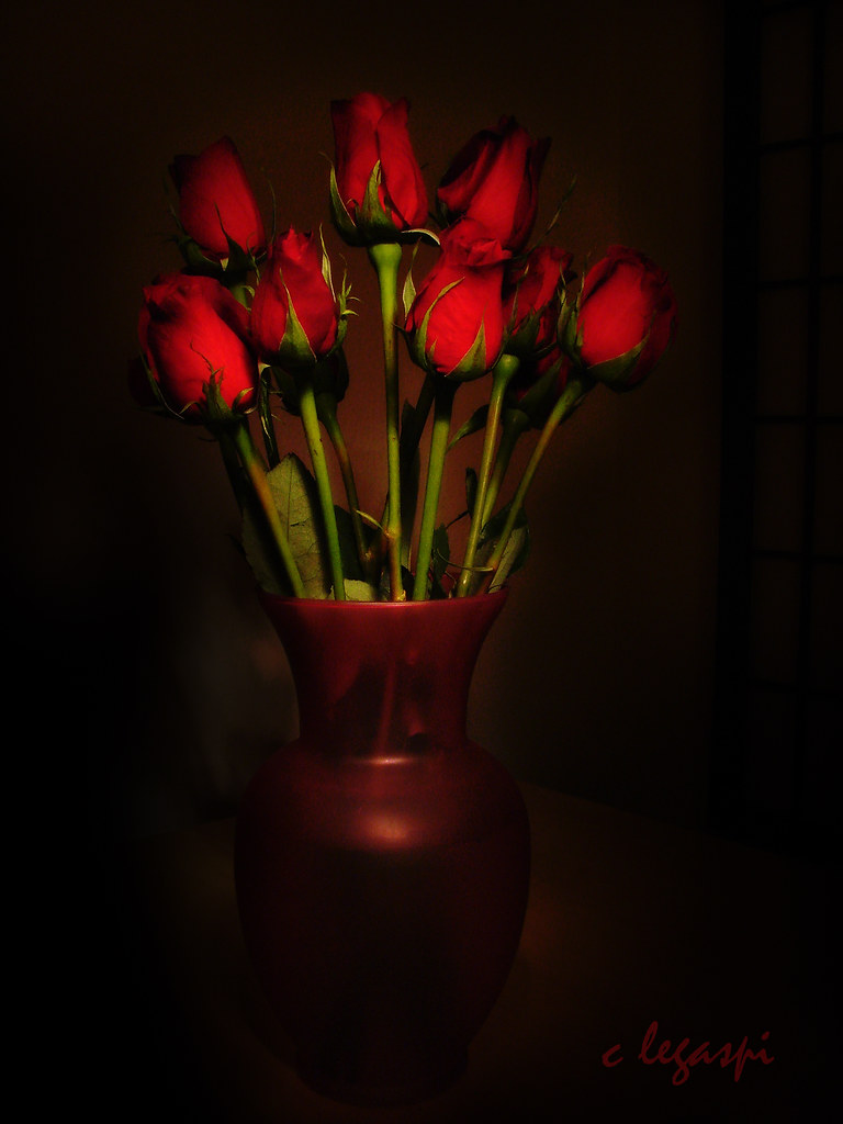 My Valentine Flowers... (painted with light)