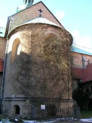 Rosenstock (rosal de mil aos) en Mariendom, Hildesheim (paola.farrera) Tags: catedral iglesia alemania hildesheim rosenstock