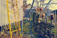 (ik old account) Tags: crossprocess ukraine c41e6 efs1855f3556ii canon400d