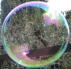 Bolla (Obba) di sapone