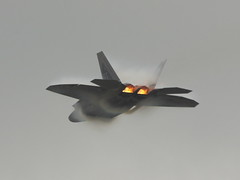F-22 Demo (dfndr13) Tags: jointserviceopenhouse joint house jsoh military army navy marines dod andrews air force base maryland kadw adw andrewsairforcebase coast guard coastguard lockheed martin f22a 03060 honor courage service country valor sacrifice