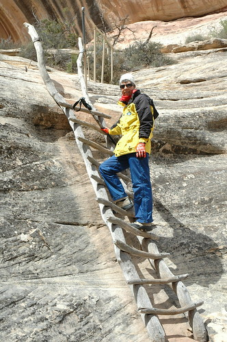 Chicken ladders to the depths of Sipapu Bridge