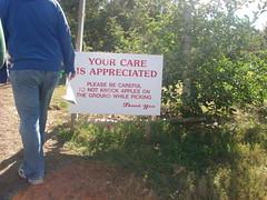 DSC01798 (rebeckahjane) Tags: apple pickin
