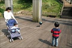 2007國旅卡DAY4(壽山動物園)023