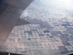SF Cultivation from Plane 3 (Maddy Gunther) Tags: view arial