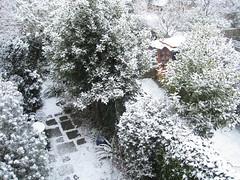 It Snow Joke...