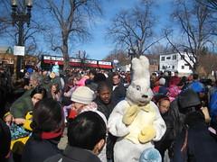 Easter Bunny in Roslindale