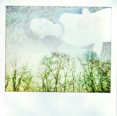 Brightly Wound (Kate Pulley) Tags: trees sunset amanda film grass polaroid exposure tennessee double system rest title reference eisley savepolaroidcom spetra itdrivesmecrazyhowmuchmyscannermessesupthecolorsitriedtoedititbutitstilllooksworse