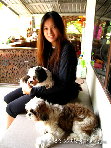 me with panda and brownie