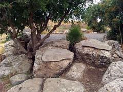20120527_112139 (missionari.verbiti) Tags: verbiti amiciverbiti terrasanta turismo israele neghev marmorto qumran gerusalemme betlemme gerico nazareth tabor cafarnao hermon cesarea