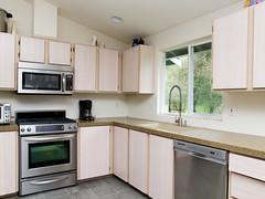 New Kitchen Counter Blanco Sink and Danze Parma Faucet (gapey) Tags: blanco window kitchen counter sink faucet granite parma remodel countertop veneto 3x danze granitetransformations d455158ss