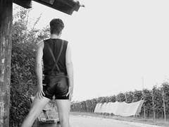 lederhose mit geschirr (leatherfan3) Tags: gay man men leather vintage shiny outdoor hose shorts lederhosen suspenders queer wandern leder leathers bavarian leathertrousers lederhose leatherpants fetisch leathershorts kurzehose leatherpant leatherhotpants ledershorts kurzelederhosen kurzelederhose
