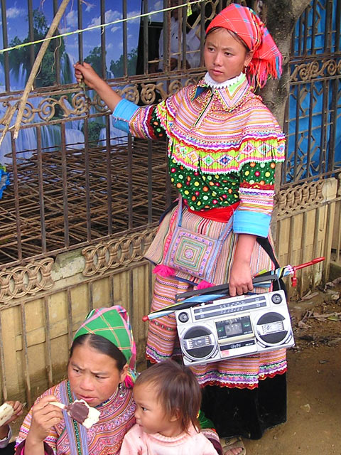 Flower Hmong with traditional musical instrument