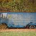 Old Van In The Woods