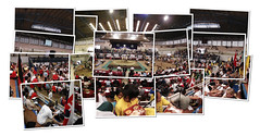 Sumo world chiampionships