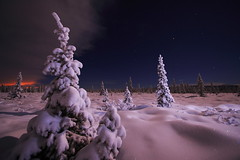 Winter Solstice (Wolfhorn) Tags: winter fab snow cold nature alaska bravo solstice naturesfinest platinumphoto anawesomeshot fiveflickrfavs