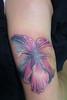 Hibiscus - Notturno - A