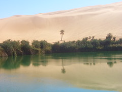 Oasis (Irene2727) Tags: reflection sahara interestingness desert oasis palmtree libya libia mouseion water platinumphoto visiongroup naturewatcher worldwidelandscapes natureselegantshots environs