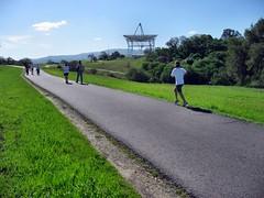 Stanford hills -