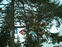Candy-Laden Trees (jessica_in_to) Tags: winter cambridge snow ontario canada festival centralpark candyland christmasincambridge
