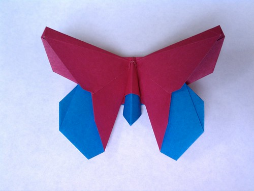 The Temko (Butterfly)