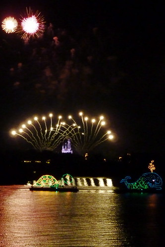 View of the fireworks show from the Polynesian