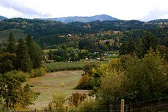 View-from-Foothills-yarn