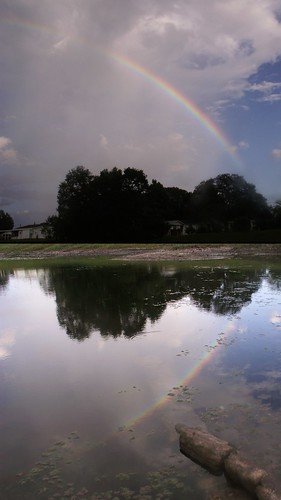 Post Office Pond Rainbow