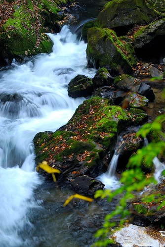 a stream : autumn in taisyaku-ravine '07