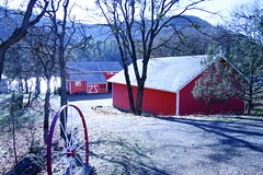 Red house (thetonezone) Tags: thanksgiving red house tree wheel oregon barn river way drive redhouse tungsten whitetrim
