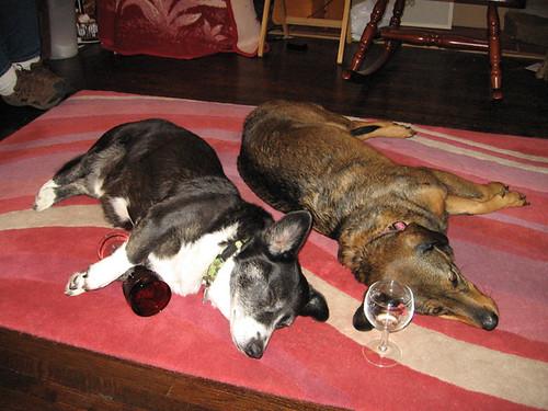 Boozehounds 03