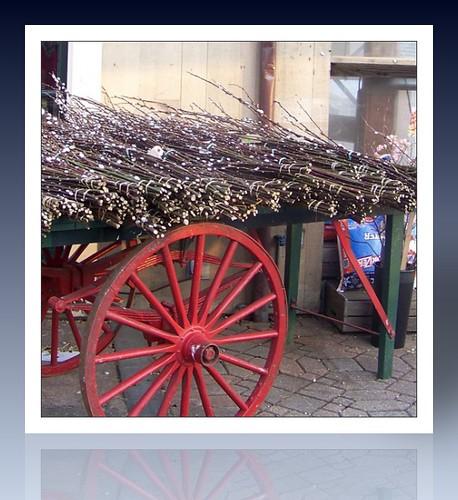 Wilson Farm Cart
